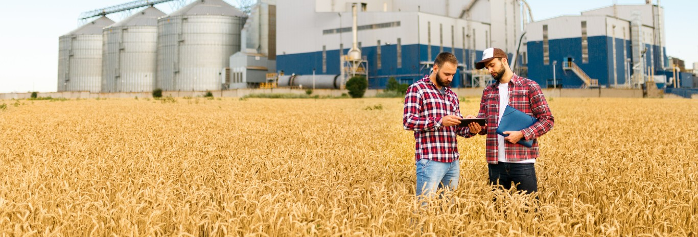 Agricultura IMM<1M