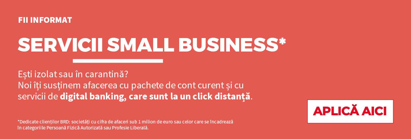 Small business Carantina RO