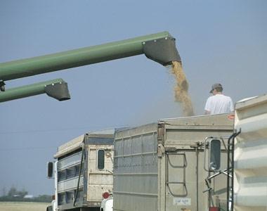 Credit de investiții pentru agricultori - Slider RO AGRI