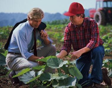 Agricultural insurances for small entrepreneurs - Slider EN AGRI